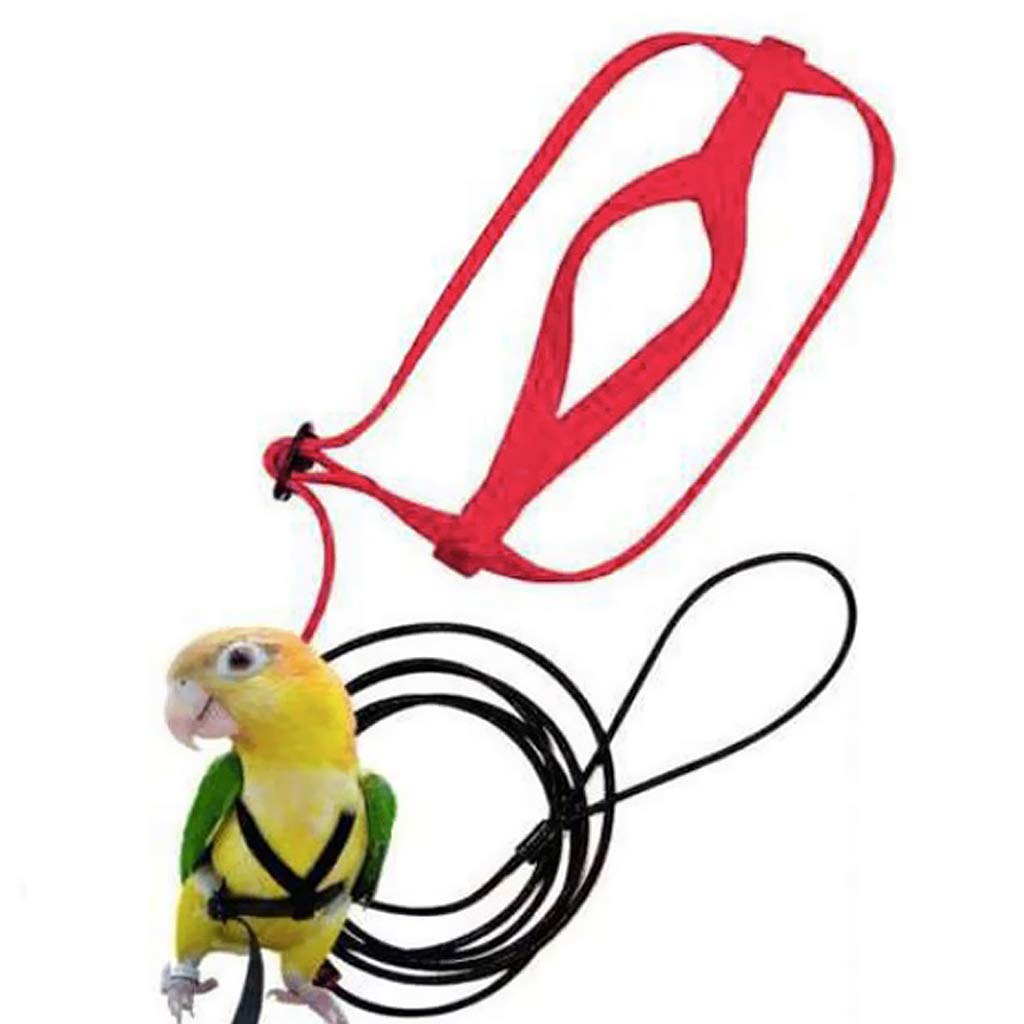 B Blesiya Bird Outdoor Perch Parrot Outside House Carried Backpack Yellow with Adjustable Harness Training Rope for Small Pet