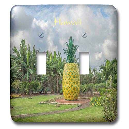 3dRose lens Art by Florene - Pineapple And Beach Art - Image of Pineapple Plantation On Oahu Hawaii - Light Switch Covers - double toggle switch (lsp_303368_2) ()