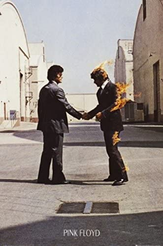 1art1 Pink Floyd - Wish You Were Here Poster Stampa (91 x 61cm ...