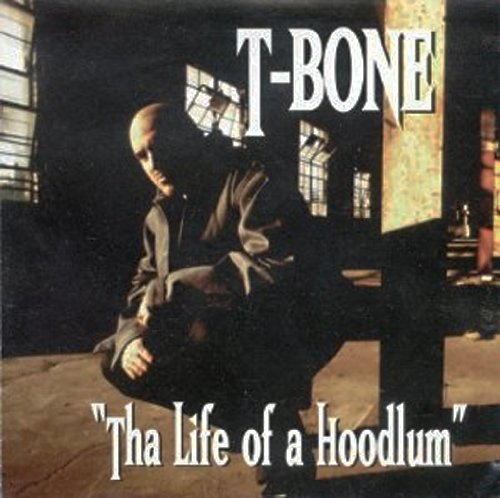 Tha Life of a Hoodlum by Metro One