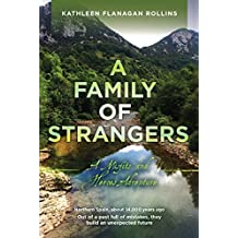 A Family of Strangers: A Misfits and Heroes Adventure