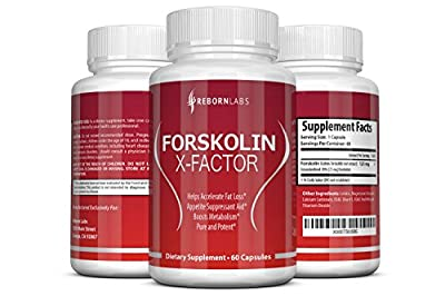 Forskolin Extract for Weight Loss | Promotes Fat Loss, Appetite Suppression, & Energy | Premium 250mg, Maximum Strength 20% Standardized | 1-Month Supply | Scientifically-Backed Fat Burner