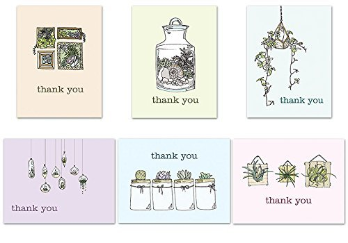 (72 Thank You Cards - Sweet Succulents Thank You - Tan Envelopes Included - Blank Cards by Note Card Cafe)
