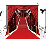LB 8X8ft Red Carpet Vinyl Photography Backdrop Customized Photo Background Studio Prop VD442