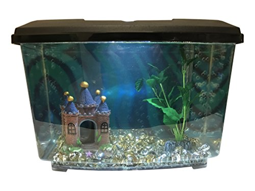 Fish Tank Aquarium Starter Kit - Includes Everything You Need To Build Your Aquarium! (Goldfish Kit)