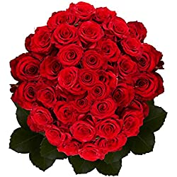 100 Red Roses Special for Valentine's
