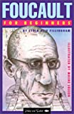 img - for Foucault for Beginners (Writers and Readers Documentary Comic Books: 62) book / textbook / text book