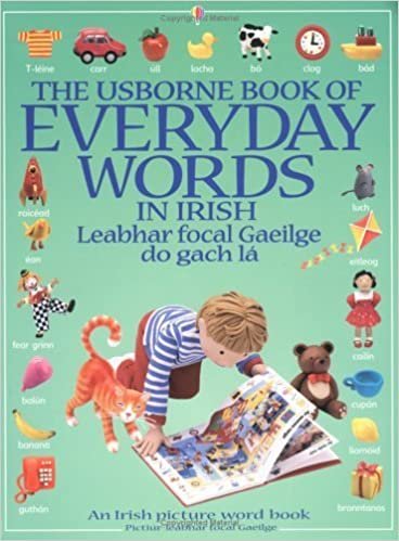 Book The Usborne Book of Everyday Words in Irish (Usborne Everyday Words) (Irish Edition) by Jo Litchfield (1999-09-24)
