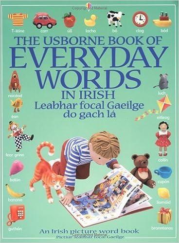 The Usborne Book of Everyday Words in Irish (Usborne Everyday Words) (Irish Edition) by Jo Litchfield (1999-09-24)