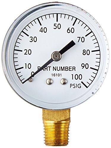 Wayne 66015-WYN1 Bottom Connection Pressure Gauges, 2, 1/4