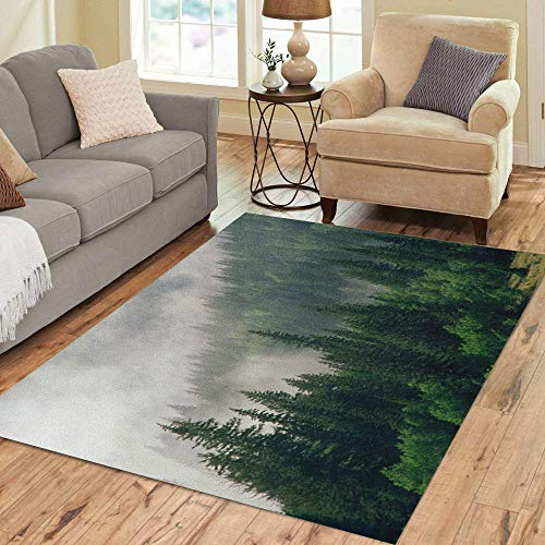 - Semtomn Area Rug 3' X 5' Mountains Morning Fog in San Juan National Forest Range Colorado Evergreen Home Decor Collection Floor Rugs Carpet for Living Room Bedroom Dining Room