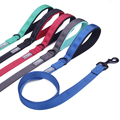 Vivaglory Dog Leash with Padded Handle, Heavy Duty Reflective Nylon Training Leash Walking Lead for Small to Large Dogs