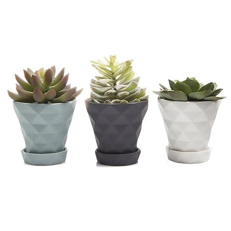 Chive - Set of 3 Diamond Small Geometric Succulent Cactus Pot and Saucer 3\u0026quot  sc 1 st  Amazon.com & Amazon.com: Chive - Set of 3 Diamond Small Geometric Succulent ...