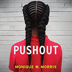 Pushout Audiobook