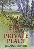 img - for A Fine and Private Place book / textbook / text book