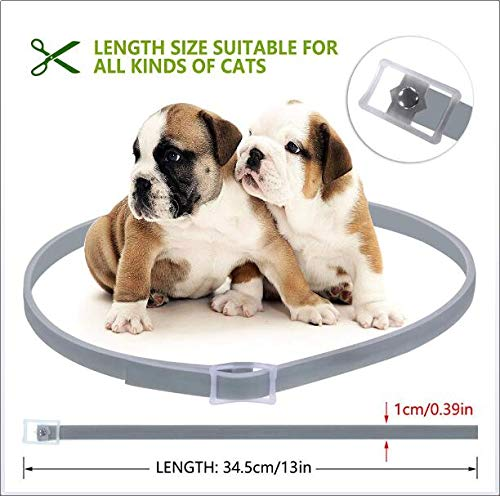 Flea and Tick Collar for Dog Cat, 8 Months Protection in Safety Ingredients Control, Ticks, Lice and Mosquitos by LBJ (Image #1)