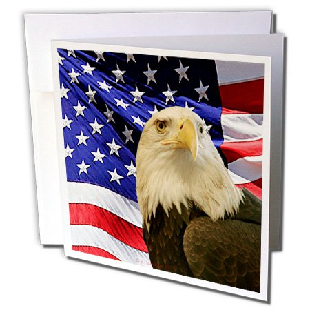 - 3dRose Bald Eagle and American Flag - Greeting Cards, 6 x 6 inches, set of 12 (gc_21650_2)