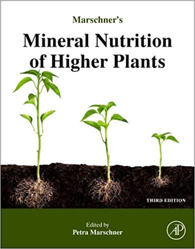 Amazon Com Marschner S Mineral Nutrition Of Higher Plants