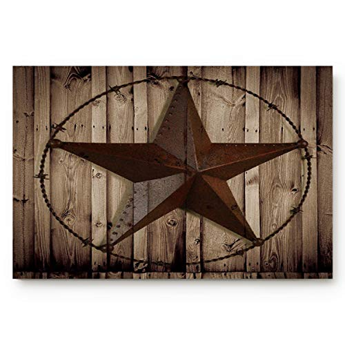 SODIKA Indoor Doormat Super Absorbent Bath Mat Non Slip Shoes Scraper Entrance Rug Carpet,Western Texas Star Large 20 by 32-Inch (Star Rugs Snow)