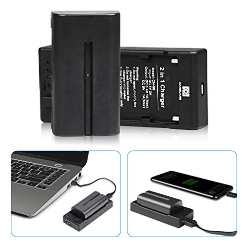 NP F550 Replacement Battery NanGuang Two-Way Portable Charger Set to Work with Battery to Charge Some Smart Devices or Charge Battery for Sony Camera Camcorder CN-160 Luxpad22 RGB88 LED Lights