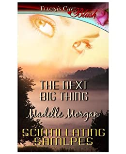 The Next Big Thing by [Morgan, Madelle]