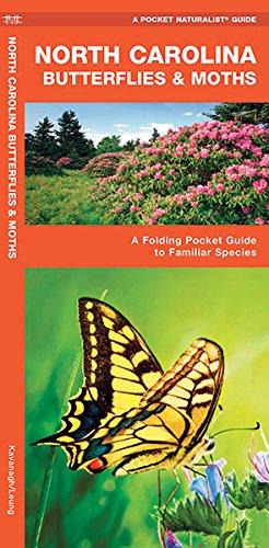North Carolina Butterflies & Moths: A Folding Pocket Guide To Familiar Species (A Pocket Naturalist Guide)