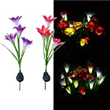 Solar Light, Hatop 4 Heads Flower Lily Solar Lantern Lawn LED Garden Outdoor Decorative Review