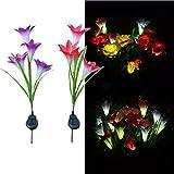 Solar Light, Hatop 4 Heads Flower Lily Solar Lantern Lawn LED Garden Outdoor Decorative Review