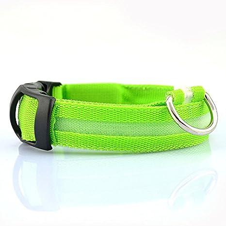 CitiPod (TM) Pet Shop Pet Dog Collar Collares Para Perros Mascotas Gatos Glow LED, productos para mascotas gato collar de perro Coller LED: Amazon.es: ...