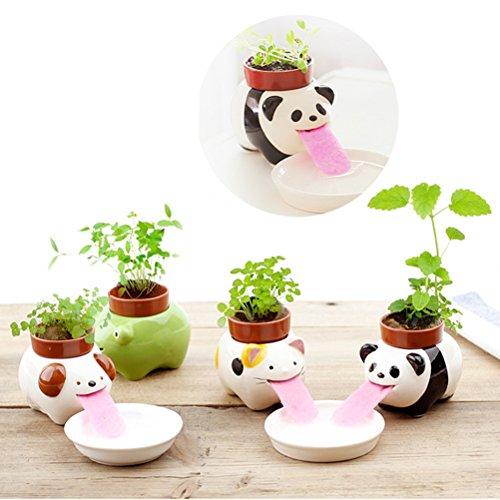 Self Watering Animal Planter, Cute Style Ceramic Mini Backpack Plant Pot Self Watering Animal Planter Straw Cup Self-watering Plantersby Sportsvoutdoors (style 2 Panda) (Straw Cute)