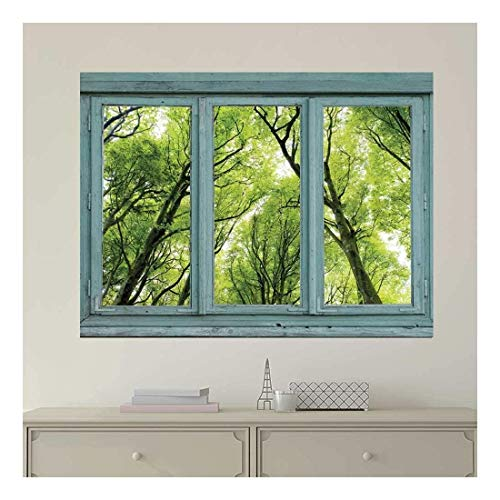 Vintage Teal Window Looking Out Into a Green Forest Wall Mural