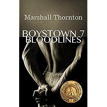 Boystown 7: Bloodlines (Boystown Mysteries)