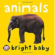 Bright Baby Animals