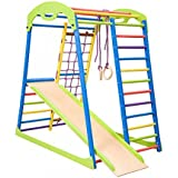 Dani LLC Colored Indoor Wooden Playground for Kids SportWood Indoor Gym Sets Up Climbing Ladder Swing Slide and Rings (SportWood)