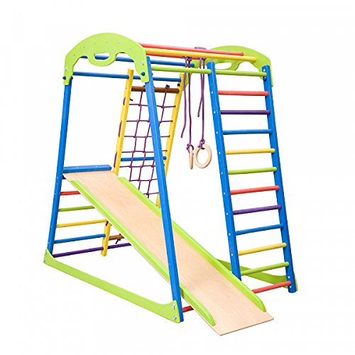 Wooden Playground Equipment - Dani LLC Colored Indoor Wooden Playground for Kids SportWood Indoor Gym Sets Up Climbing Ladder Swing Slide and Rings (SportWood)