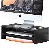 FITUEYES 2 Tier Wood Monitor Stand Computer Screen Riser with Storage Shelf DT204201WB