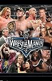 WWE レッスルマニア22 [DVD]