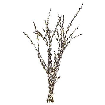 10 Palmkatzchenzweige Weidenkatzchenzweige Oster Zweige 80cm