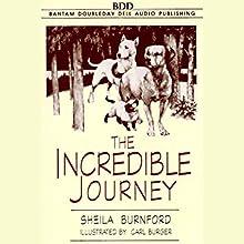 The Incredible Journey | Livre audio Auteur(s) : Sheila Burnford Narrateur(s) : Megan Follows
