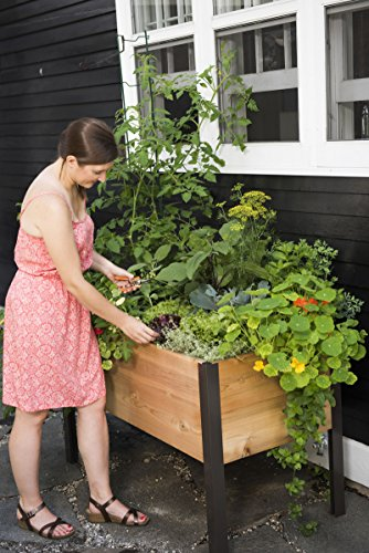 2 Ft X 4 Ft Elevated Cedar Planter Box Import It All