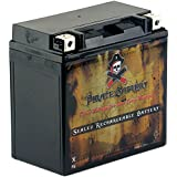 YTX14-BS High Performance - Maintenance Free - Sealed AGM Motorcycle Battery