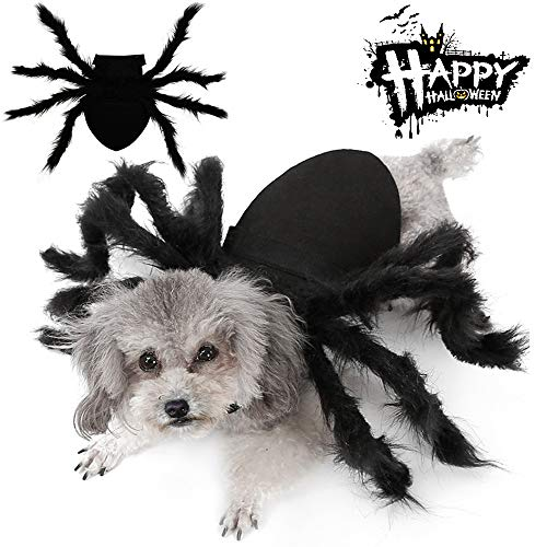 Best Halloween Costumes For Large Dogs (Malier Halloween Dogs Cats Costume Furry Giant Simulation Spider Pets Outfits Cosplay Dress up Costume Halloween Pets Accessories Decoration for Dogs Puppy Cats)