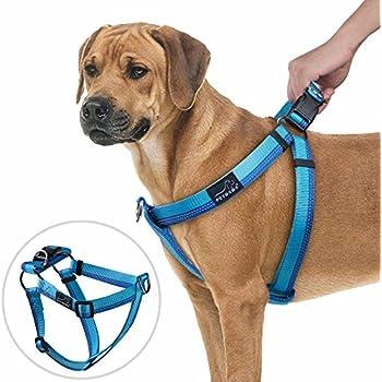 Uk Dog Training Collars Reviews Best
