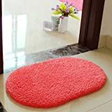 Hollyu0027s Absorbent Microfiber Bath Mat Soft Shaggy Bathroom Mats Shower Rugs  (30 X 50CM (