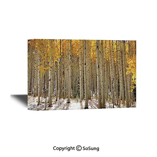 Farm House Decor Canvas Wall Art,Aspen Trees with Golden Leaves in Snow Forest in Early Winter Time Landscape,Giclee Print Gallery Wrap Modern Home Decor Ready to Hang,24x16 inch