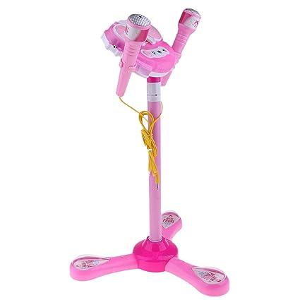Amazon.es: Hellery Karaoke Micrófono Infantil con Altavoz ...