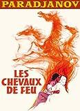 """Afficher """"Les chevaux de feu"""""""