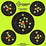 4 inch target - Splatterburst Targets 12 x 12 inch (5) Bullseye Reactive Shooting Target - Shots Burst Bright Fluorescent Yellow Upon Impact - Gun - Rifle - Pistol - AirSoft - BB Gun - Air Rifle (10 pack)