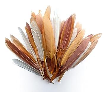 Resultat d'imatges de plumas