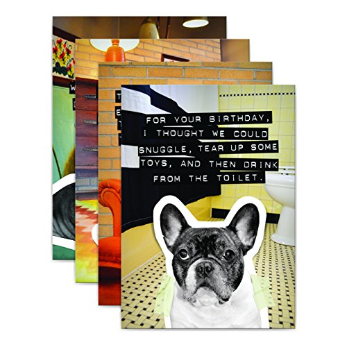 From Frank Birthday Greeting Card Pack with Kraft Envelopes, 8 Count